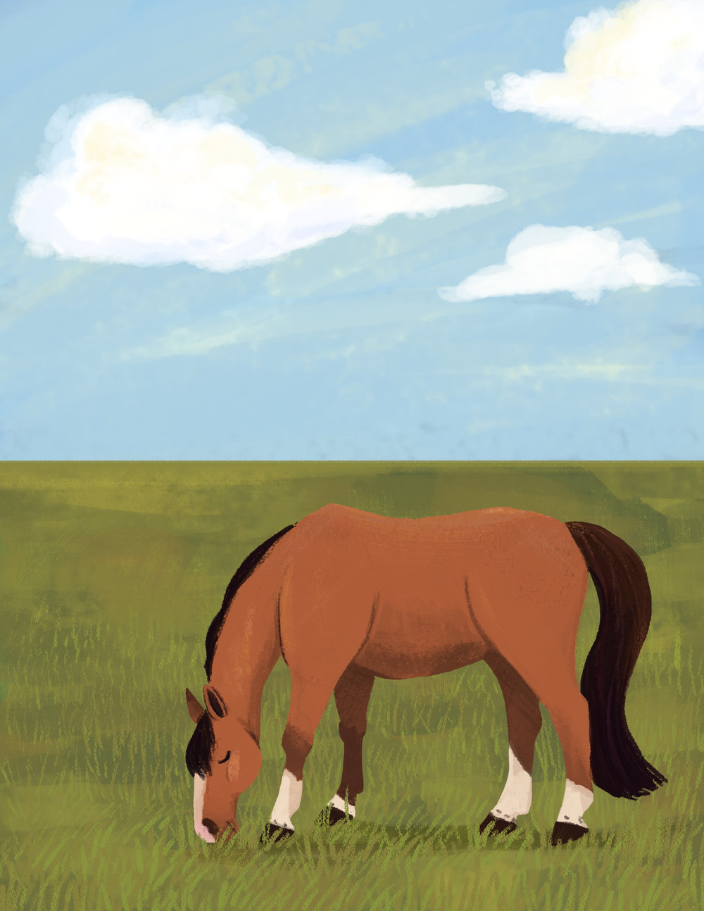 Horse farm.jpg