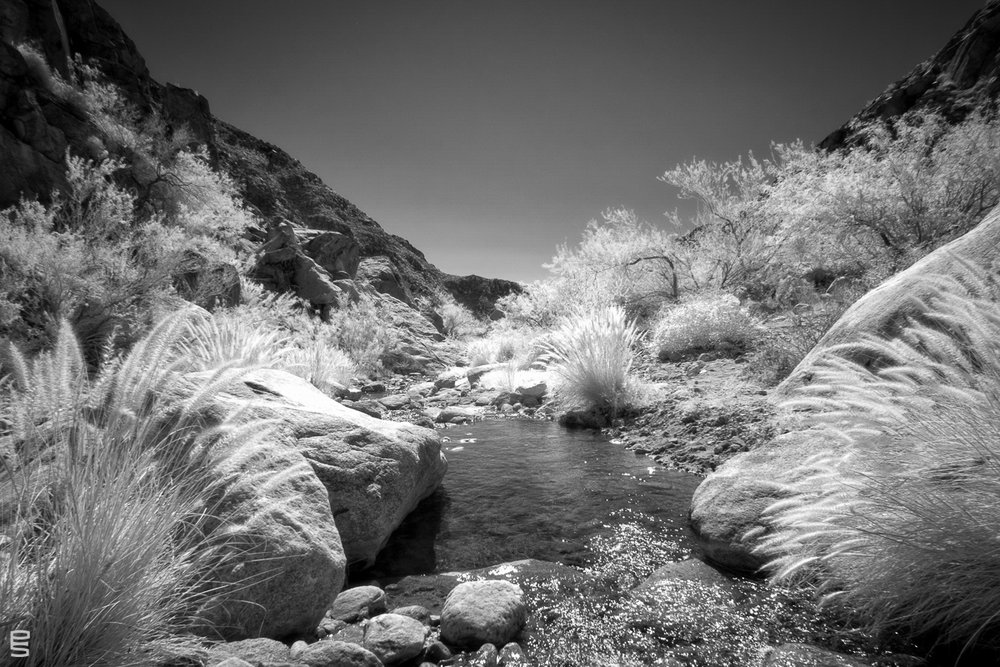 Anzo-Borrego Desert -