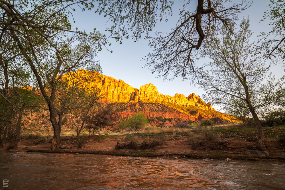 A traditional photo from the same location, our hotel terrace, looking across the Virgin River at The Watchman.