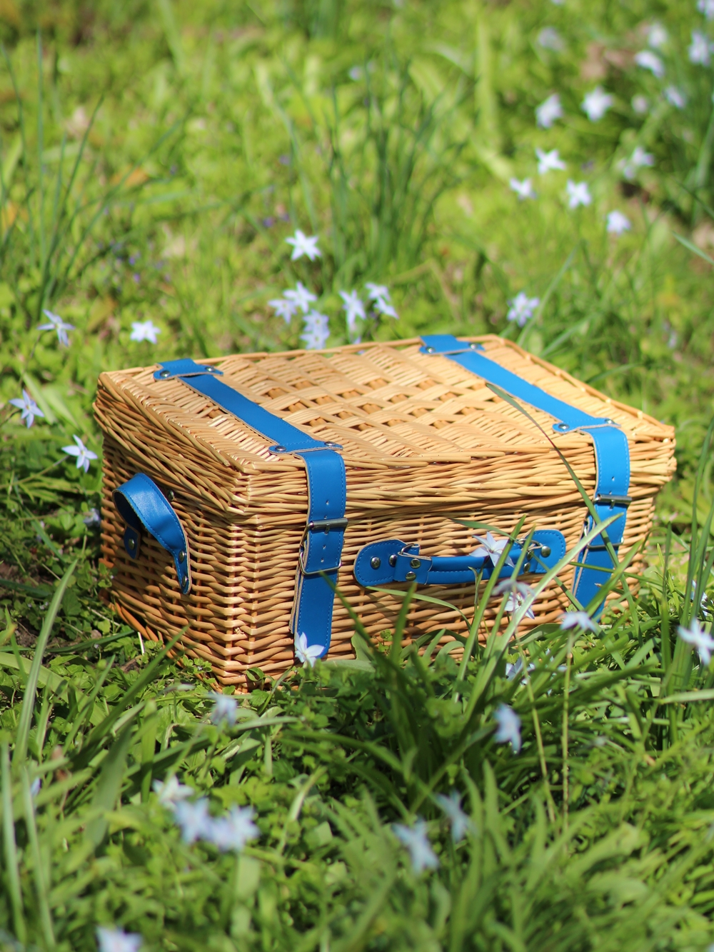 Panier pique nique picnic Cath Kidston