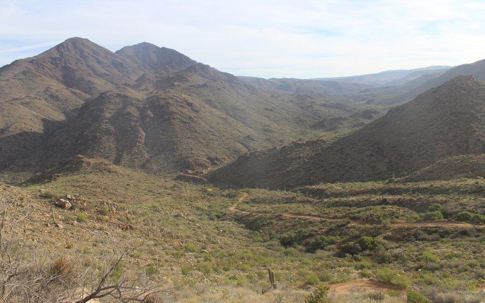 New River Trail.JPG