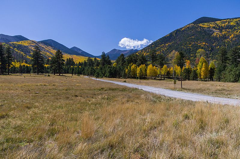 Lockett_Meadow_(29863970150).jpg