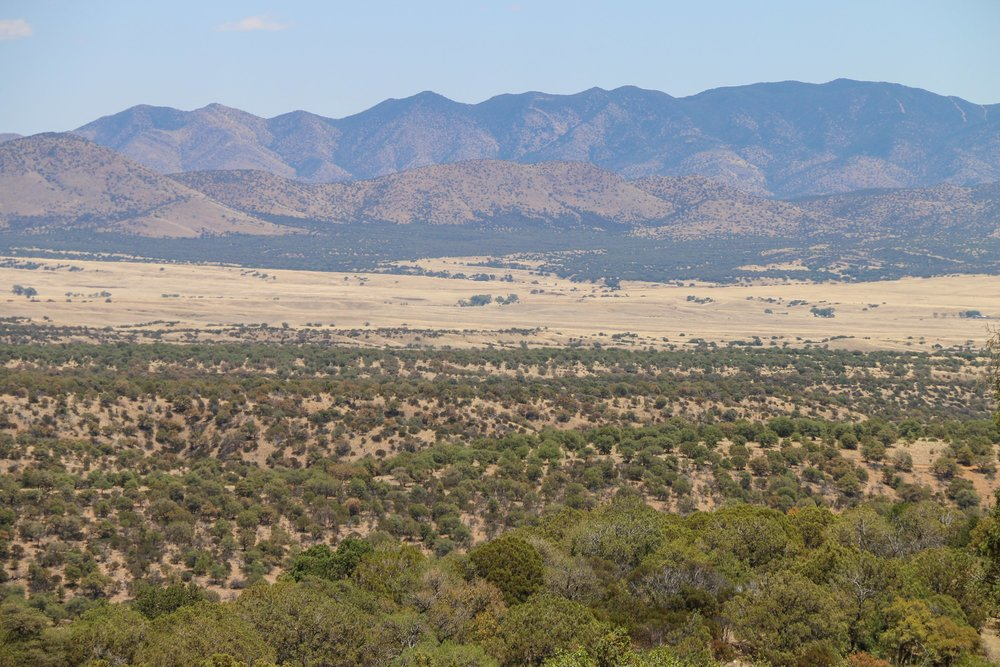 Looking south from Washington Camp into the San Rafael Valley & Mexico.