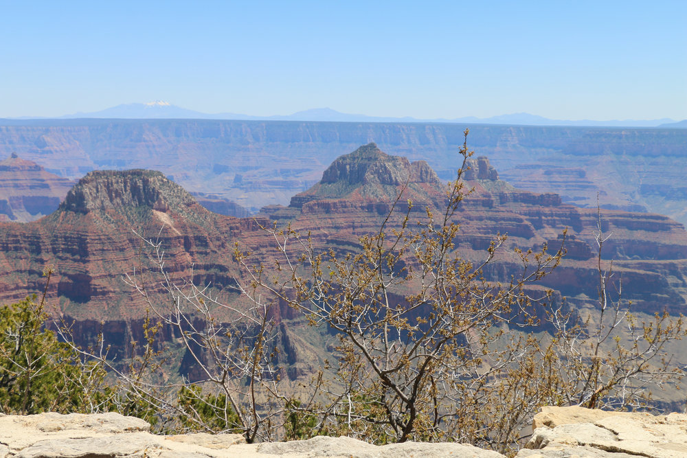 The view from the North Rim.