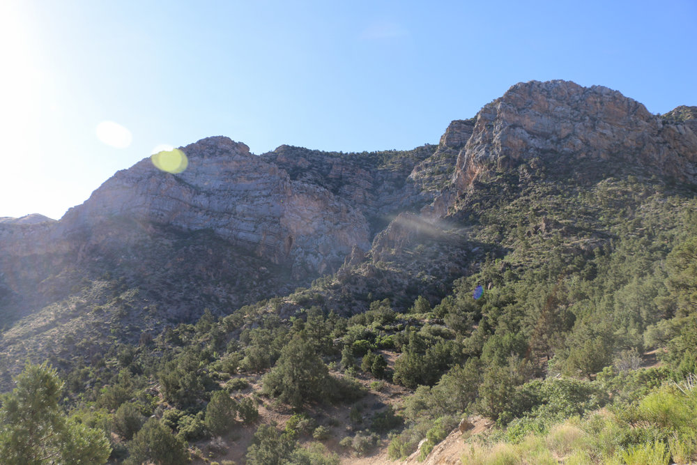 Our campsite near the scenic Lime Kiln canyon.