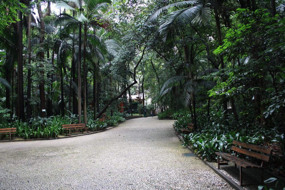 Trianon Park empty Sao Paulo
