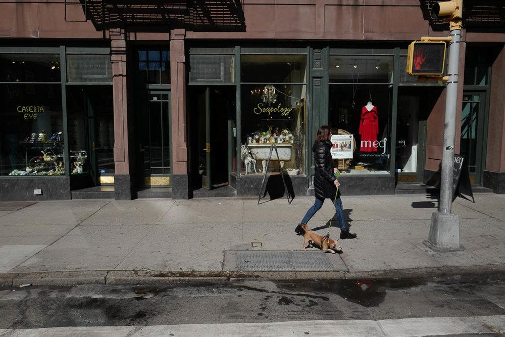 Dog walk. Greenwich Avenue.