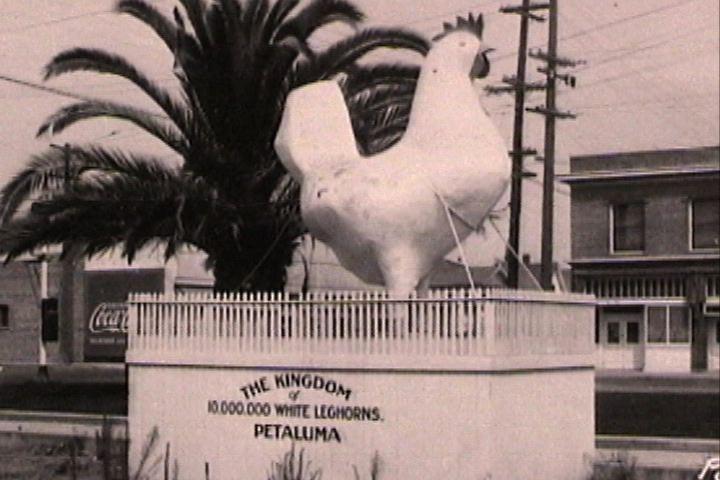 Big Chicken.jpg