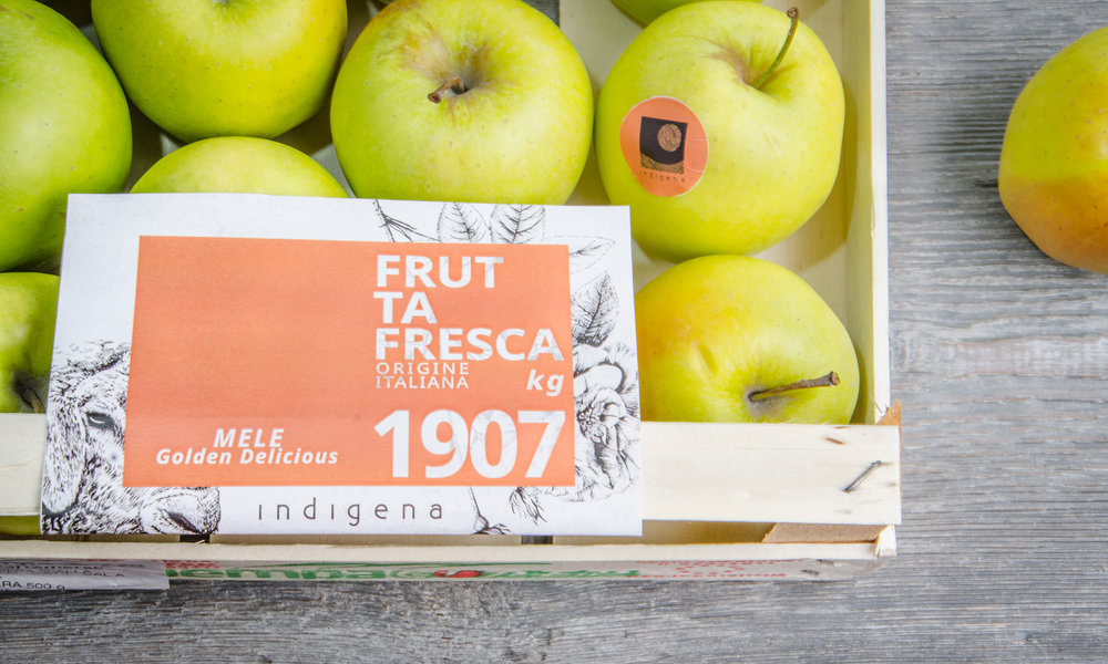 Indigena-packaging-branding-biologico-bio-drawing-frutta.jpg