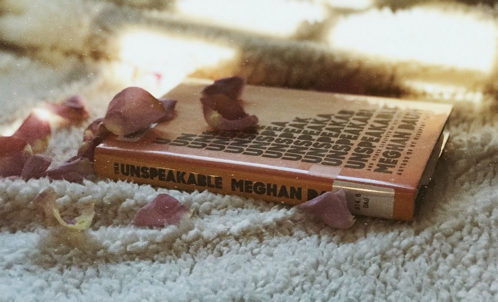 "Meghan Daum's personal essay collection "" Unspeakable: And Other Subjects of Discussion "" where she talks of controversial and personal issues such as emotional dissonance, illness, death, and the choice of whether to have children."
