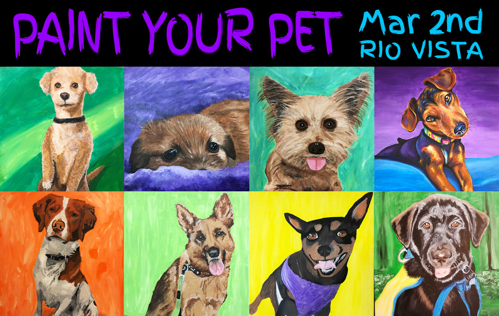 All 8 of these paintings were from our January Paint Your Pet Event. This was everyone's first painting!