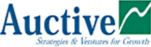 Auctive Management Consulting