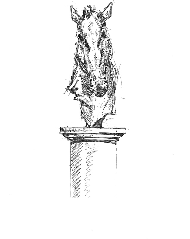 horse head front view.jpg