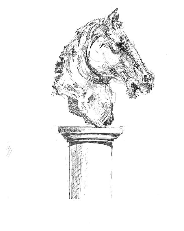 horse head side view-2.jpg