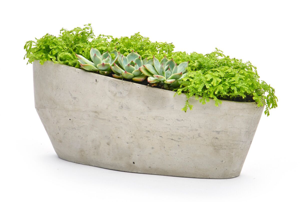 Copy of Edited_Tilted_Planter_1024x1024.png