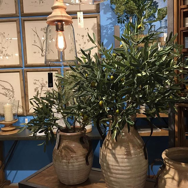 These olive branches look so real we had to get very close to see that they are synthetic! We like them quite a lot!