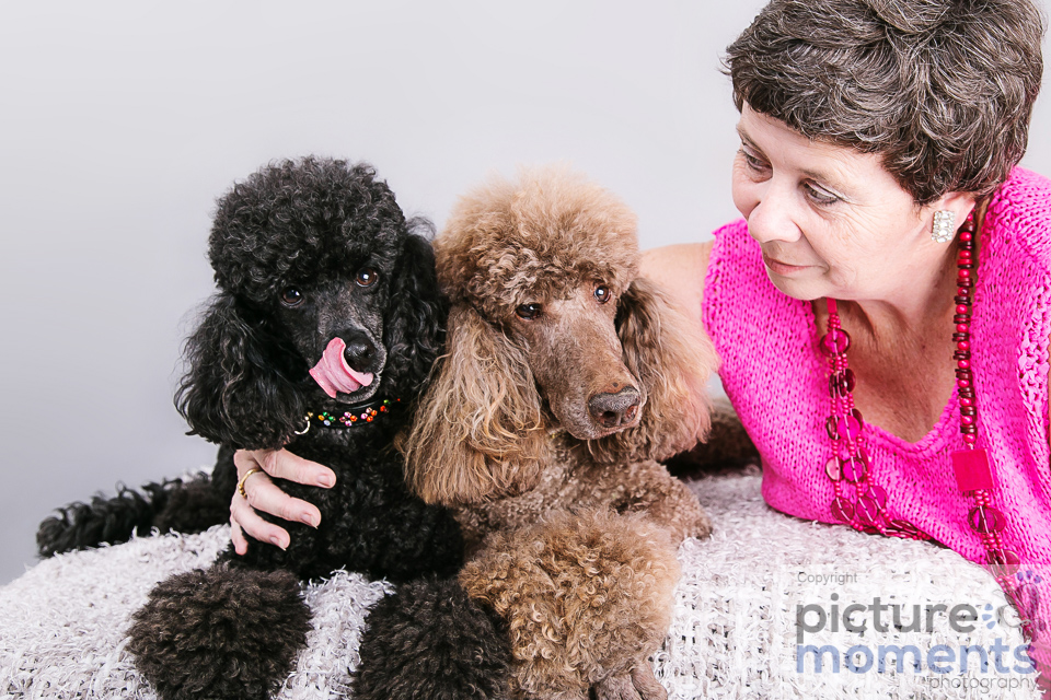 Picture Moments pet family105.JPG