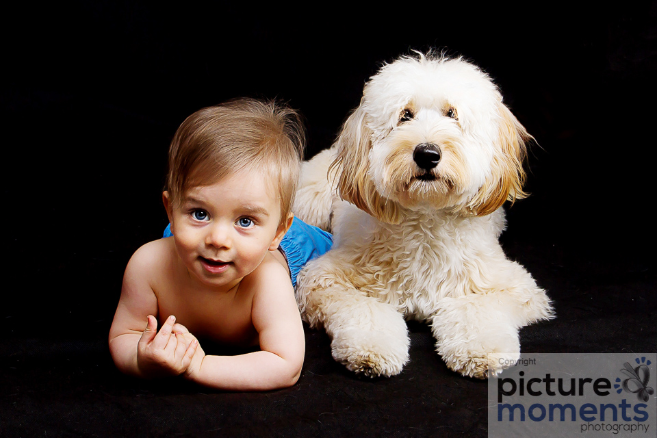 Picture Moments pet family120.JPG