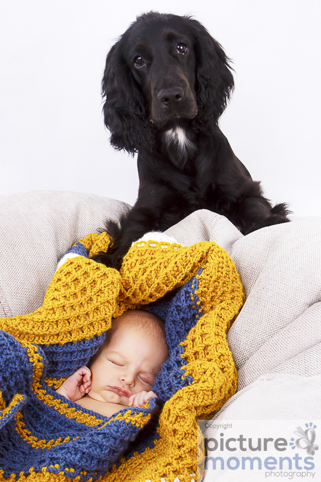Picture Moments pet family146.JPG