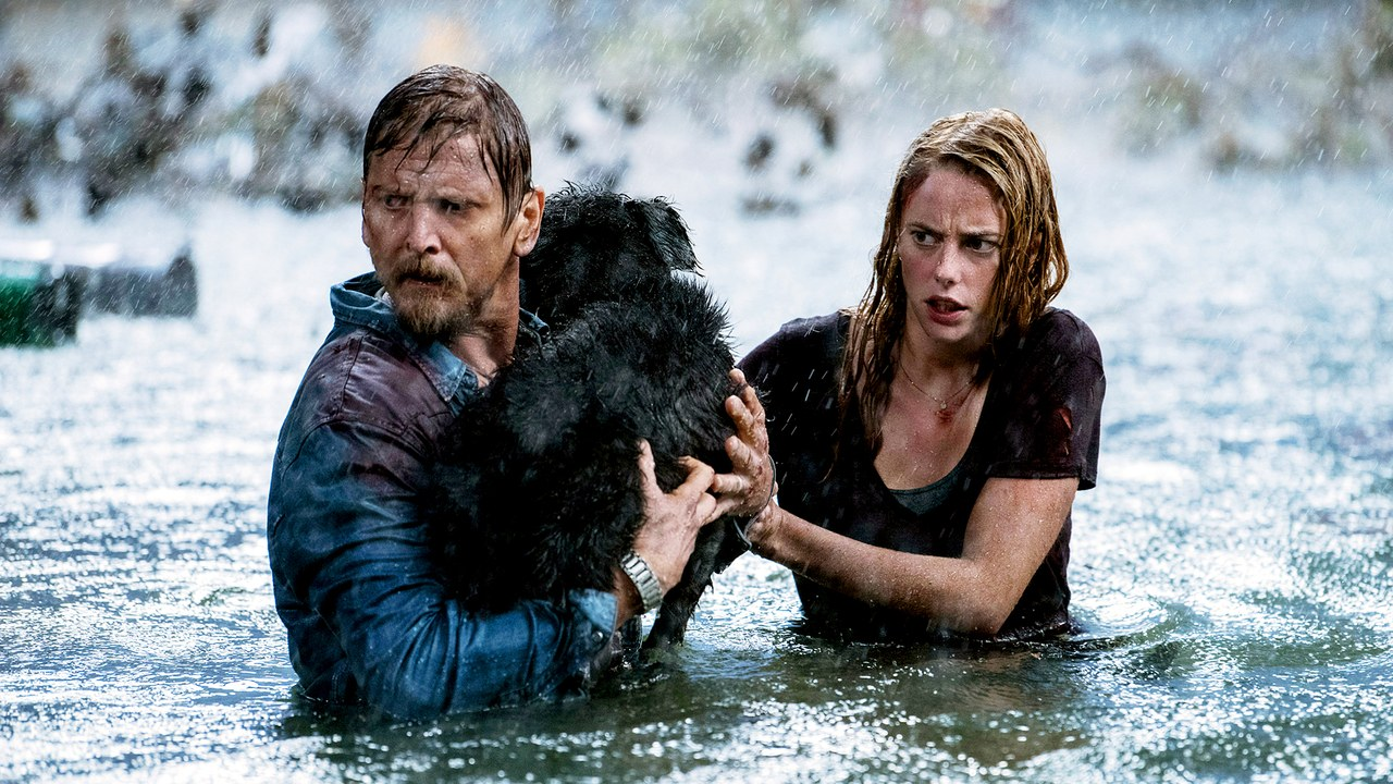 Crawl deserves a place in the creature feature canon — So