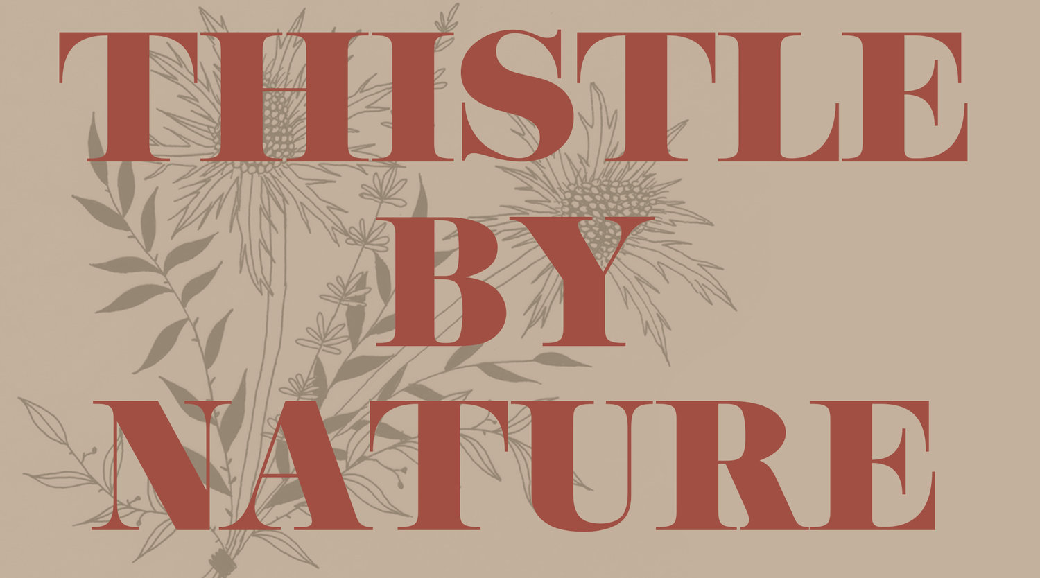 Thistle by Nature