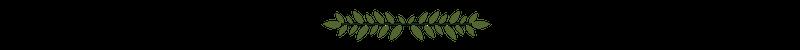 Leaf Flourish.png