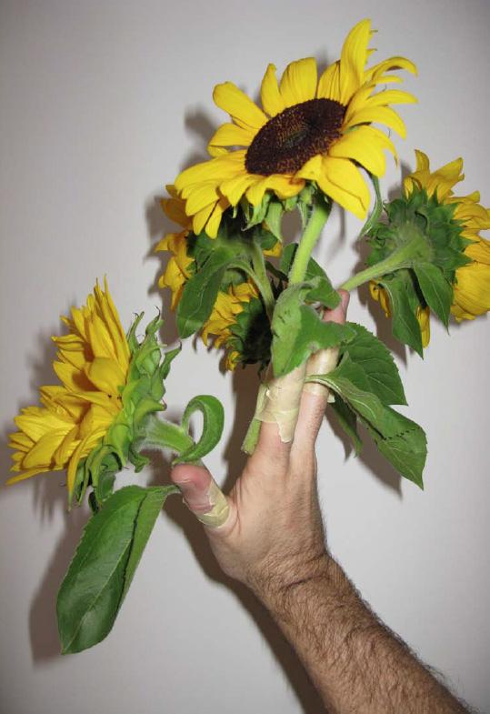 jardin retrouvé- alfred drago rens -kittesenk - enkster - le cento mani -