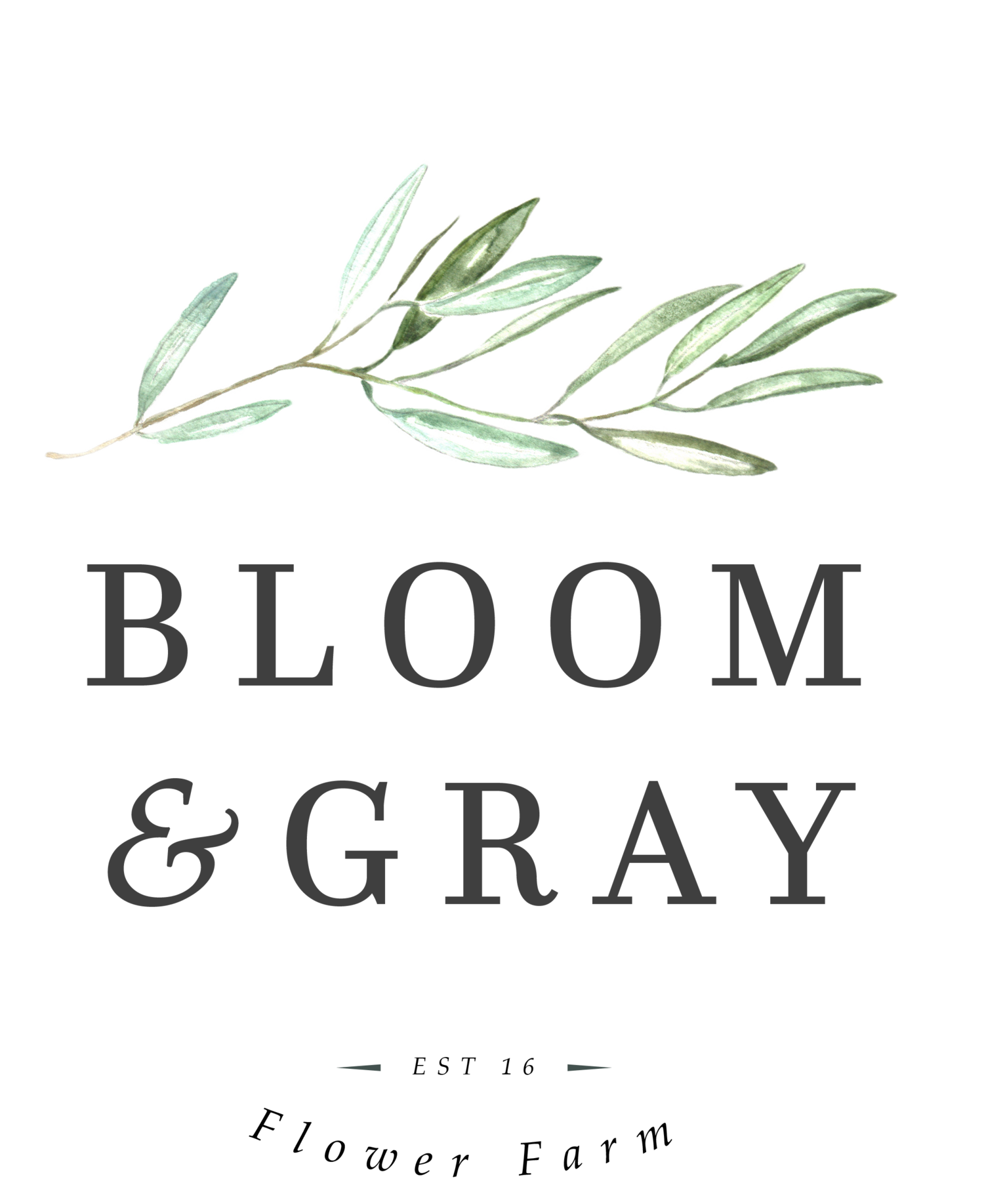 BLOOM & GRAY