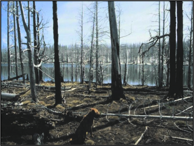 Effects of catastrophic wildfire in the western United States. (photo courtesy of Yakama Indian Nation)