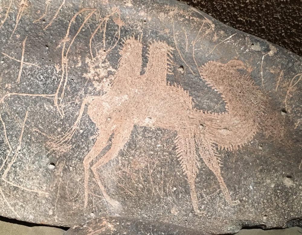 Prehistoric petroglyph