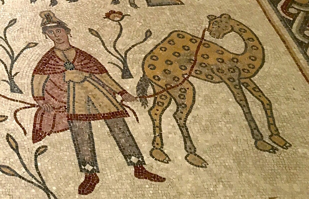 Byzantine church mosaic, Madaba