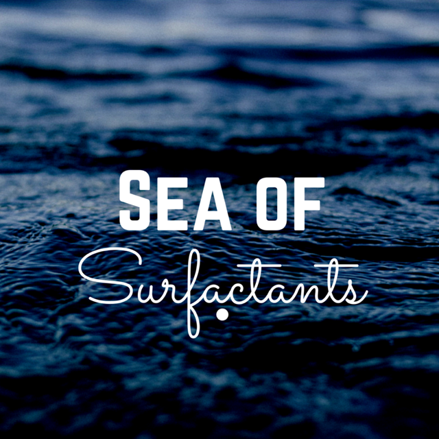 Sea of Surfactants.png