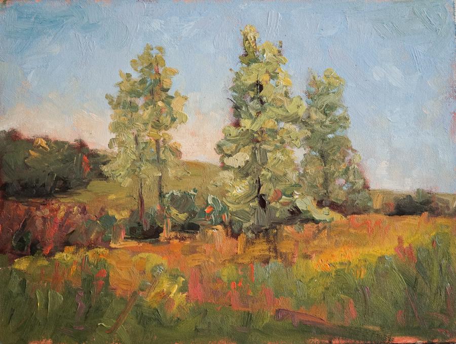 """Autumn Flush , 12"""" X 16"""" oil on panel"""