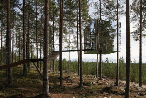 tree-hotel-view.jpg