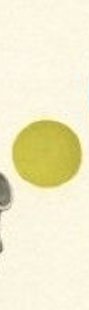 Screen Shot 2019-01-01 at 11.37.29 AM.png