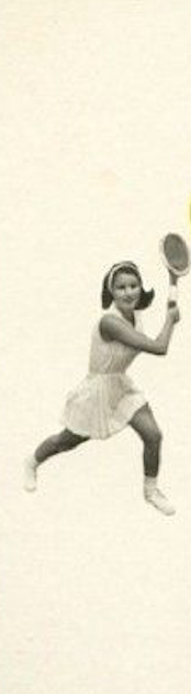 Screen Shot 2019-01-01 at 11.37.15 AM.png