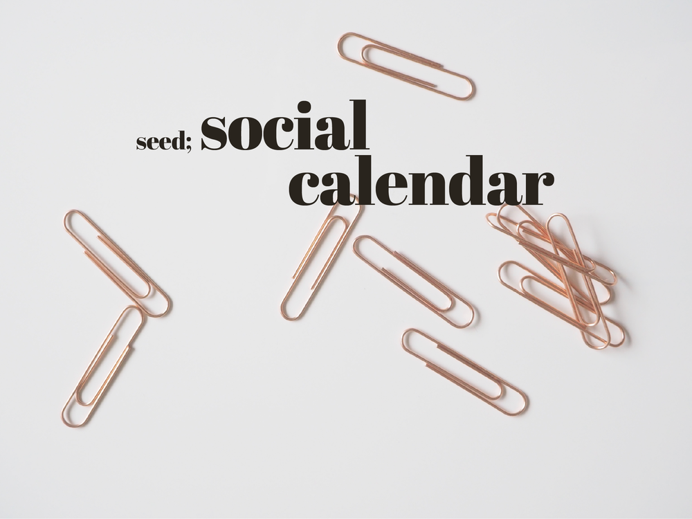 Social Calendar | Download | Seed Design Consultancy