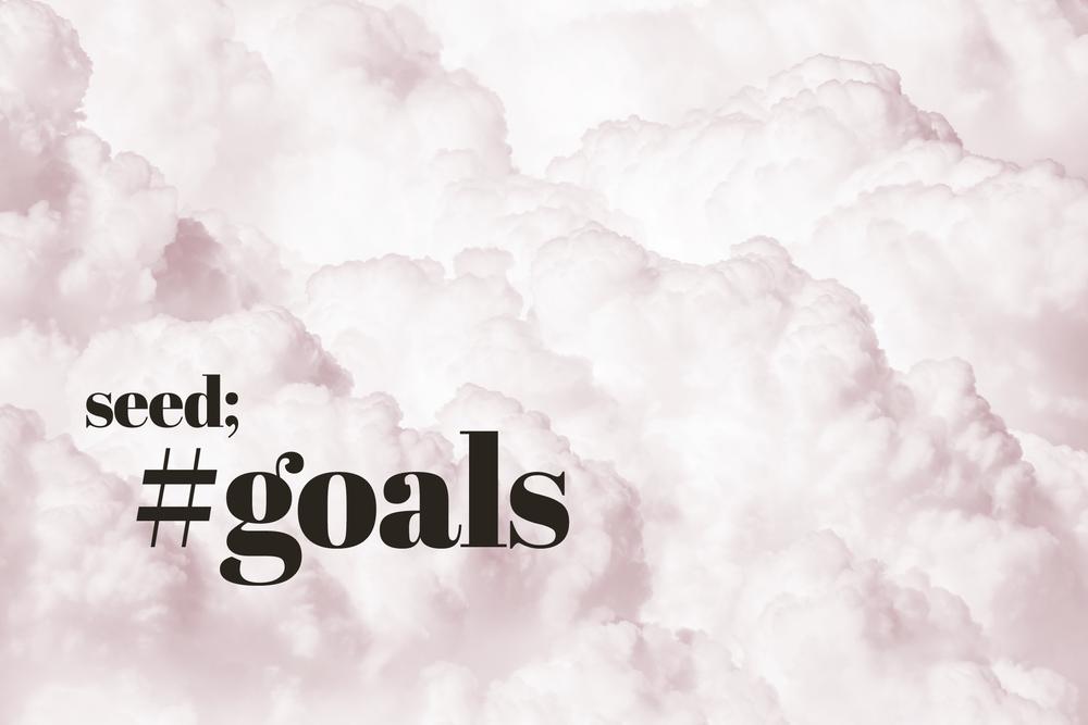 #goals | Seed Design Consultancy