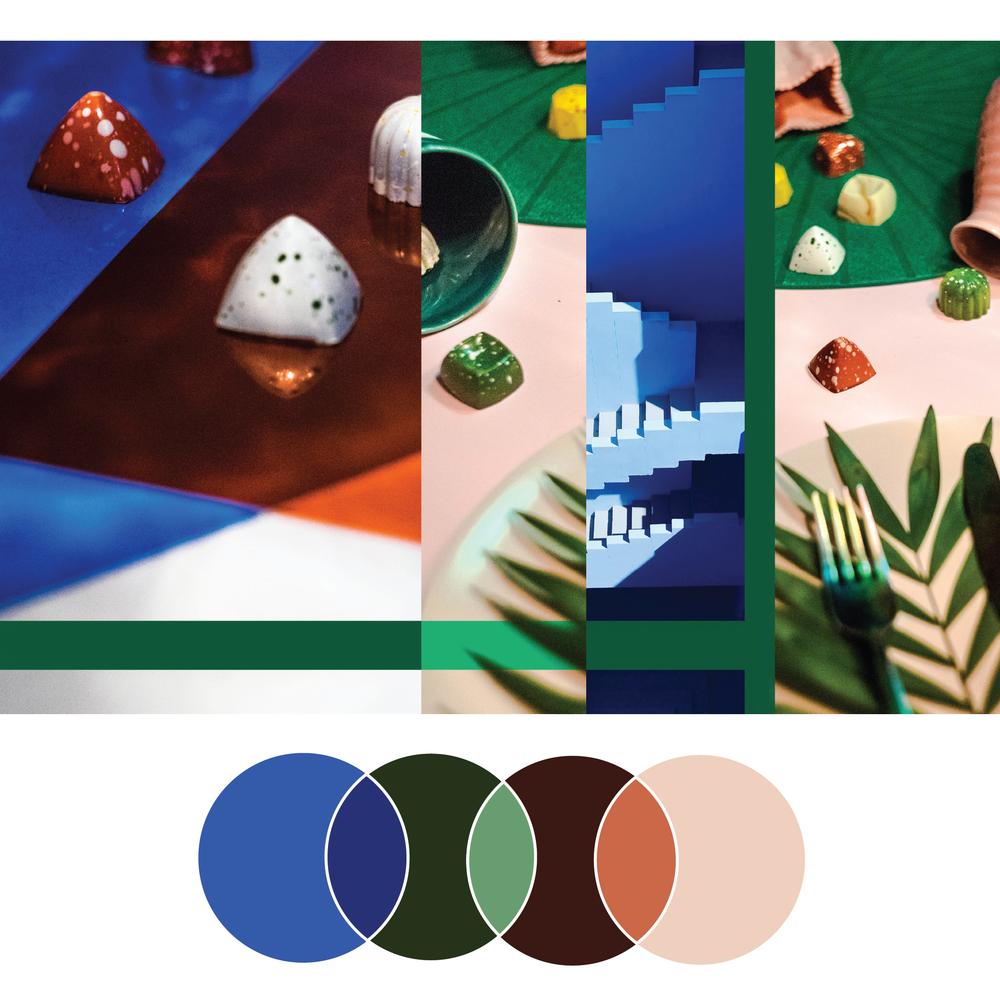 The Blogging Reboot | Seed Design Consultancy | color palette scheme