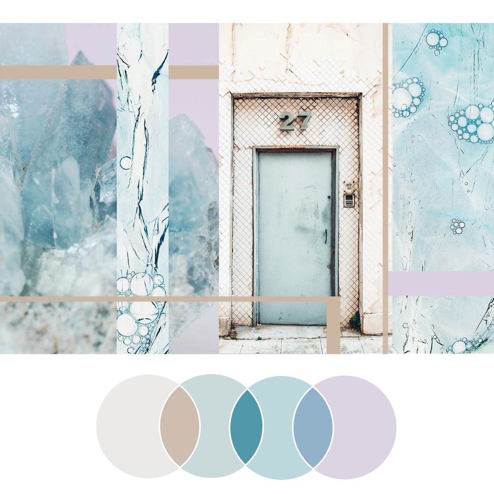 Owning It | Seed Design Consultancy | color palette scheme
