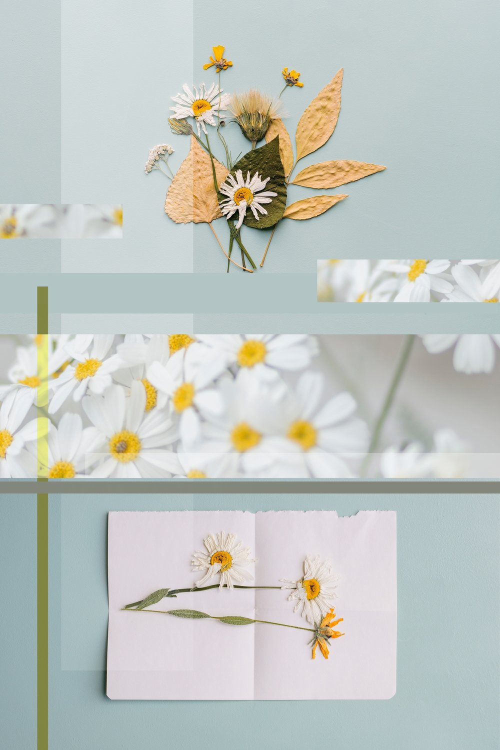 Spring Cleaning | Seed Design Consultancy