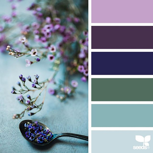 today's inspiration image for { color nature } is by @helen_makadia ... thank you, Helen, for another incredible #SeedsColor image share!