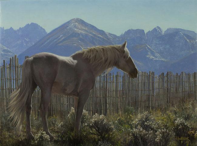high-country-horse-canon-OJS.jpg