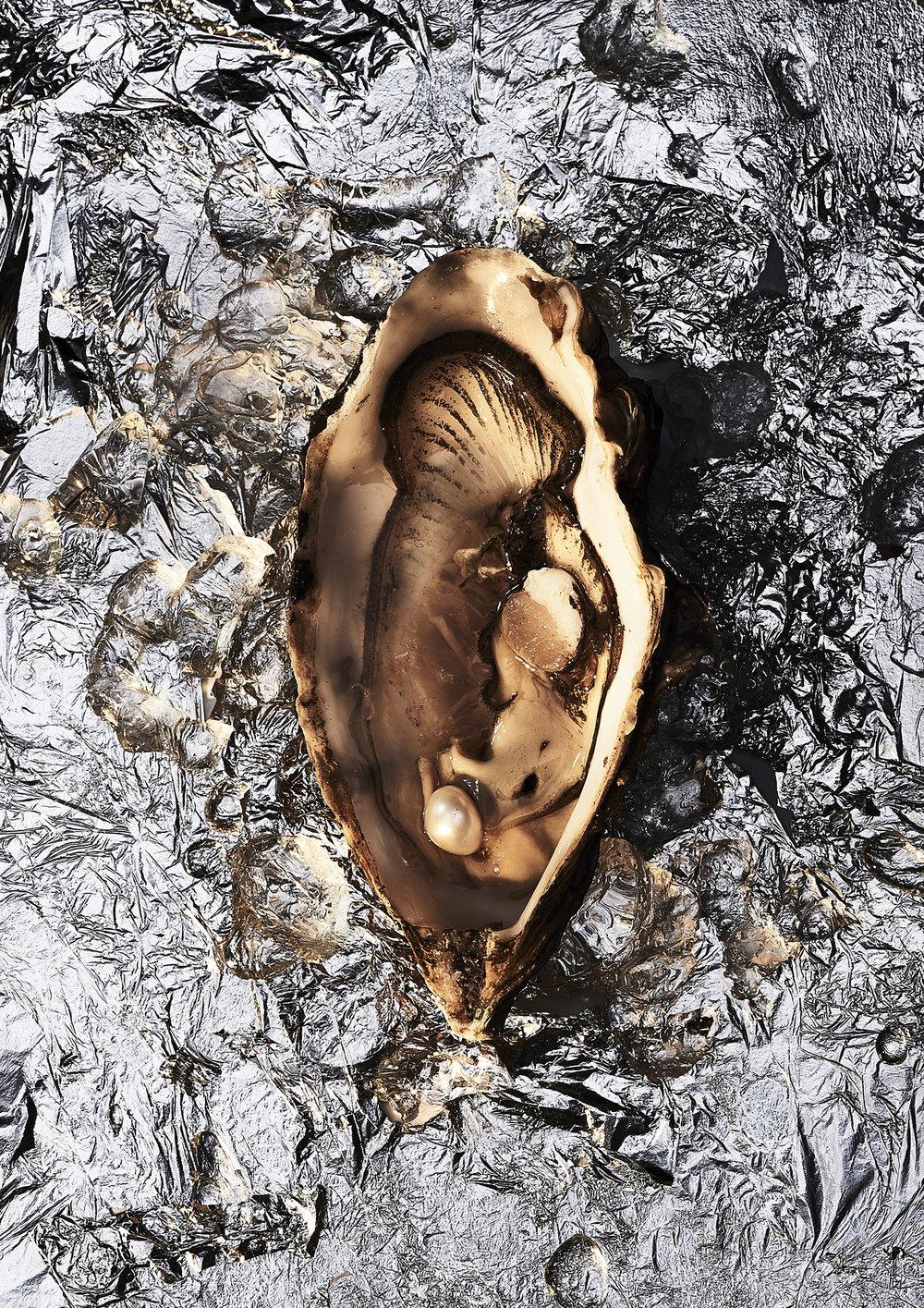 oyster_A3.jpg