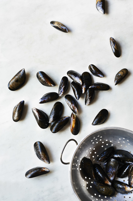 mussels_2.jpg