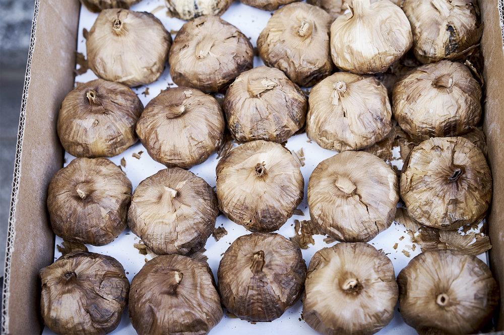 garlic copy.jpg