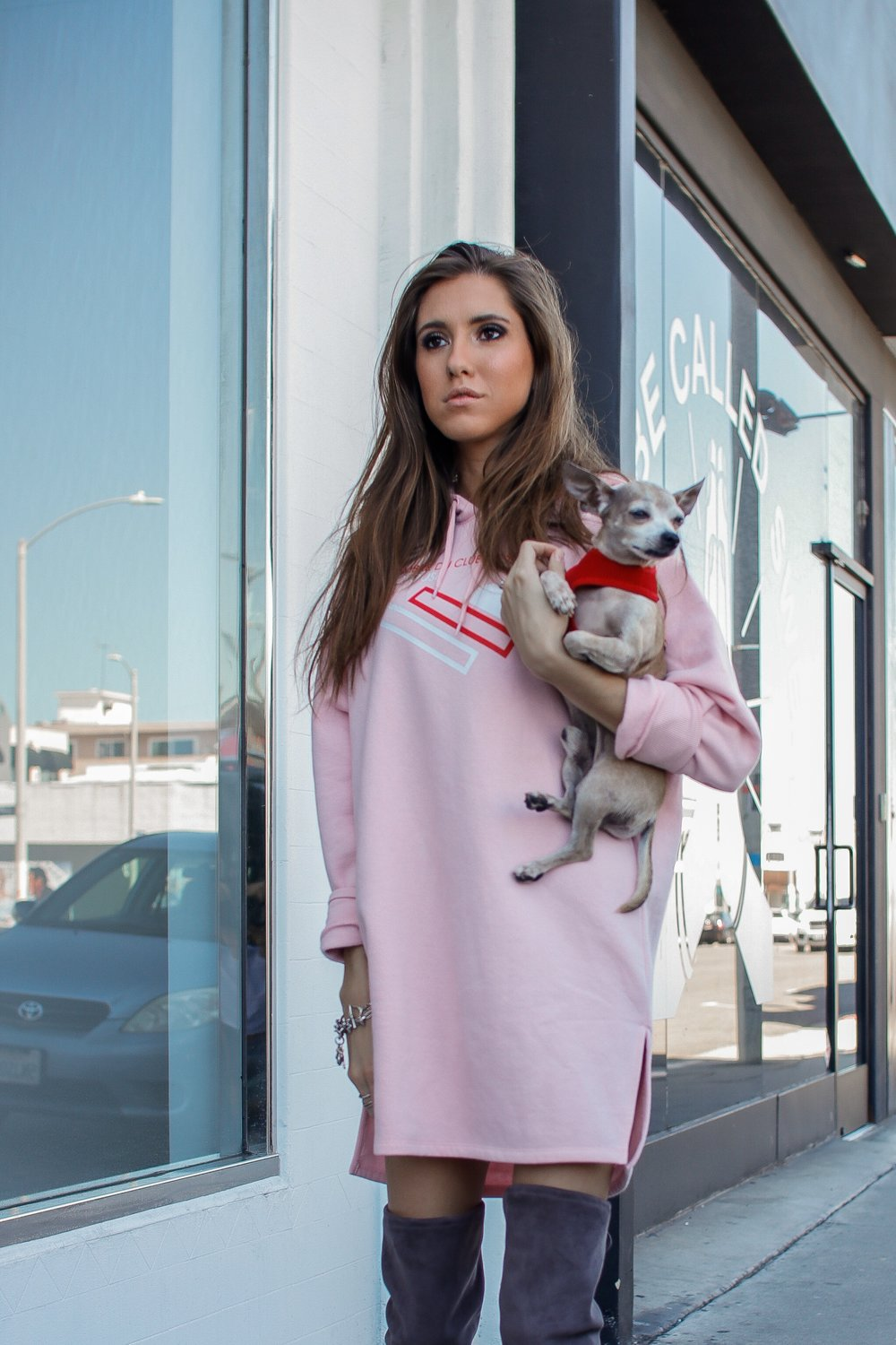 The+Hungarian+Brunette+Pink+sweater+dress+and+OTK+boots+%288+of+11%29.jpg