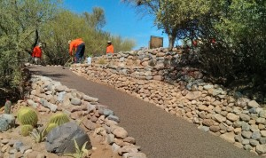 Porous Pave: Arboretum Trail Restoration