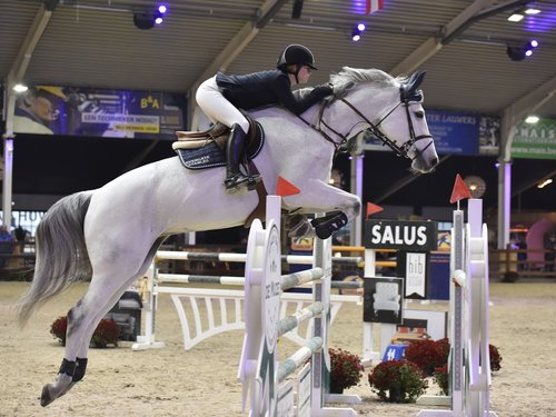 Une de L'othain - Born: 2008Breed: Selle FrancaisGender: MareBreeding: Conterno Grande x CentoJoined Team: May 2018Ridden by: Jenn Gates