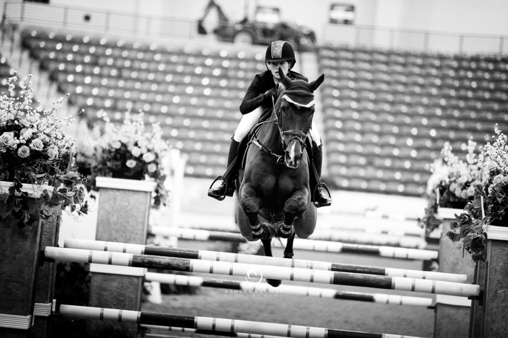 Jenn Gates and Monaco at the Las Vegas National Horse Show. Photo by Ashley Neuhof Photography.